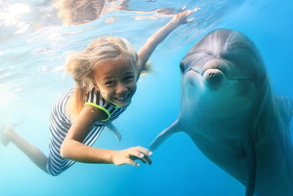 dolfijn met kind